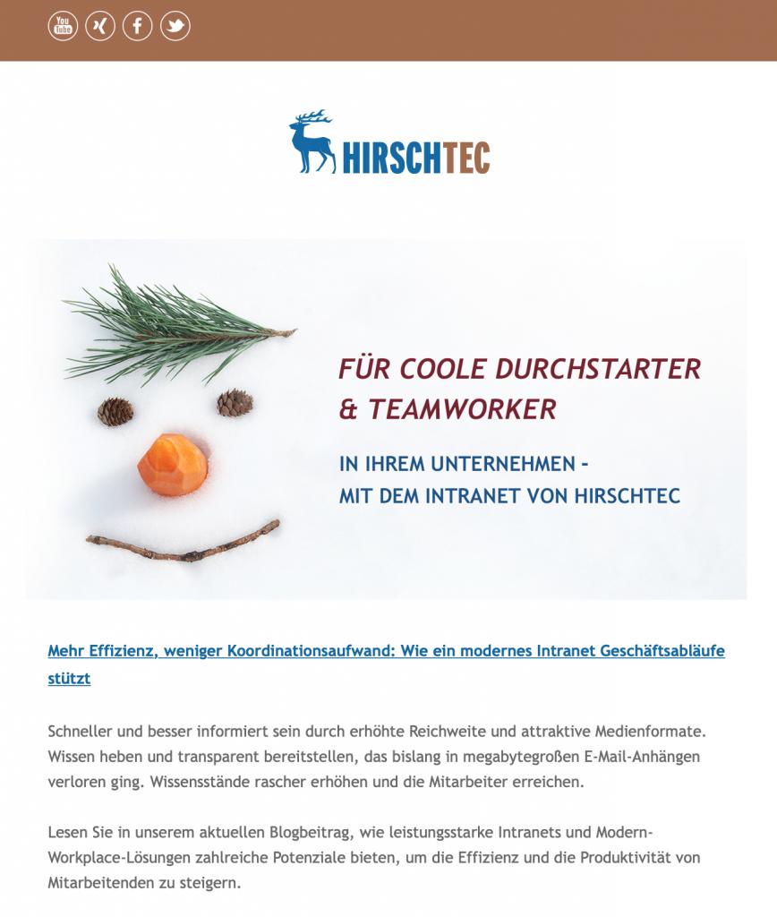 Beispiel-Ansicht eines HIRSCHTEC-Newsletters